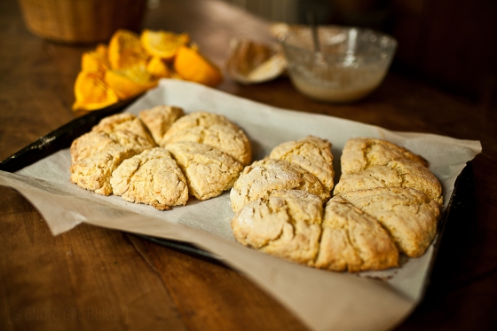 Orange Scones ::Granola Girl Bakes